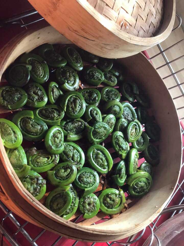fresh fiddleheads for the moms